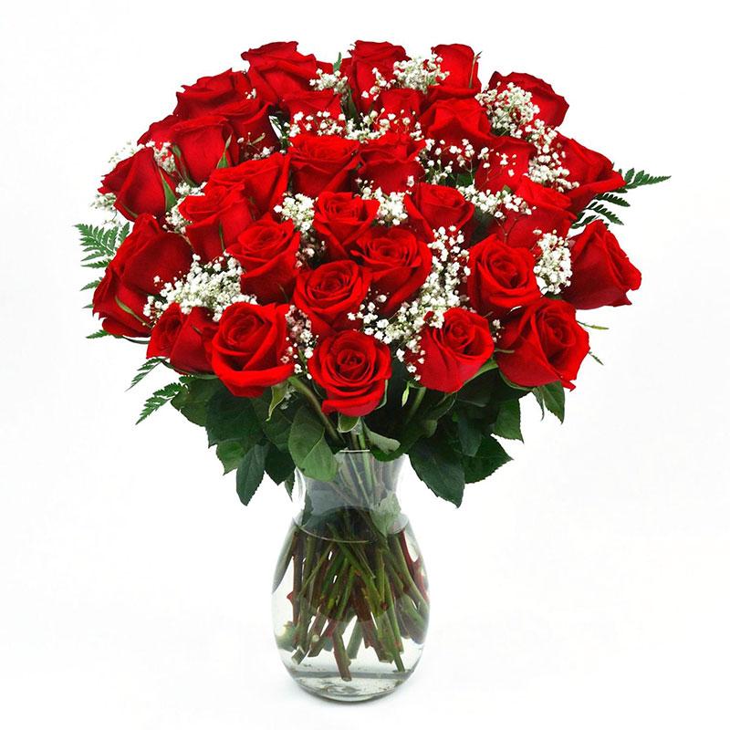 ���ระวัติดอกกุหลาบ Sunapinyaporn